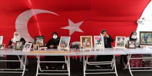 14 ailenin evladına kavuşması Diyarbakır annelerine umut oldu
