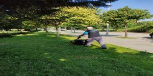 Yeşil alanlar da tırpan kesimi ve temizlik çalışması
