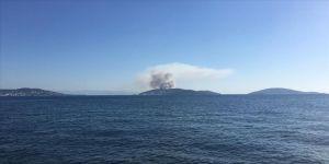 İstanbul'da orman yangını çıktı ! Havadan ve karadan müdahale ediliyor