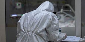 ABD'de yapılan araştırma Kovid-19'un sivrisinekler yoluyla bulaşamayacağını doğruladı