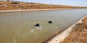 Şanlıurfa'da sulama kanalına giren iki kuzen kayboldu
