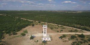 Edirne'nin ormanları 3 yangın kulesinden gözetleniyor