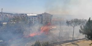 Gebze'de alkol alan şahısların yaktığı ateş yangın çıkardı