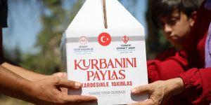 Türkiye Diyanet Vakfı ihtiyaç sahiplerine 557 bin 311 hisse kurban dağıttı