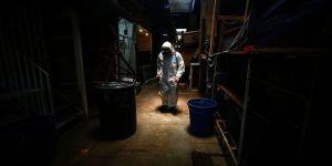 Brezilya, Hindistan ve Meksika'da Kovid-19 kaynaklı ölümler artıyor