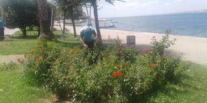 Sahildeki parklar sürekli bakımdan geçiyor