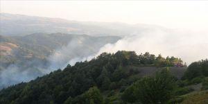 Tokat'taki orman yangını kontrol altına alındı