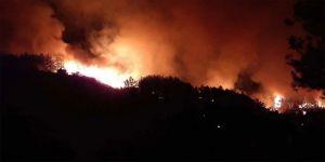 Antalya ve Adana'da çıkan orman yangınlarına müdahaleler devam ediyor
