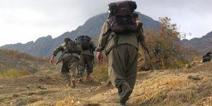 Mardin ve Şırnak'ta 3 terörist güvenlik güçlerine teslim oldu