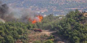 Terör örgütü YPG/PKK, Hatay'daki orman yangınını propaganda çalışmasına dönüştürdü
