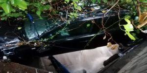 Gebze'de sele kapılan otomobillerden birisi sürüklenerek dere yatağına düştü