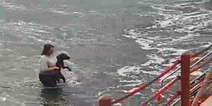 Kıyafetleri ile denize girip köpeği boğulmaktan kurtaran veteriner hekim konuştu