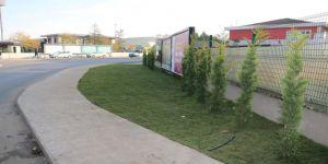 Otogar Köprülü Kavşağı'na yüzlerce ağaç dikilecek
