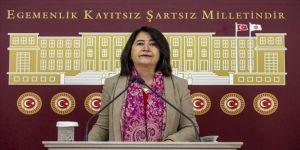 HDP'li Pekgözegü, herkesin parasız, güvenli ve etkili aşıya erişiminin sağlanmasını istedi