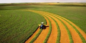 Tarım arazileri artık dijital ortamda kiralanabilecek
