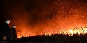 Kocaeli'de askeri arazi yakınındaki sazlık alan alev alev yandı