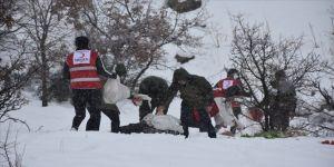 Şırnak'ta yaban hayvanları için doğaya yiyecek bırakıldı