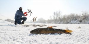 Yüksekovalı balıkçılardan kazma kürekli balık avı