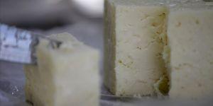 Lezzetini Istrancalar'da yetişen zengin bitkilerden alan Kırklareli peyniri tescillendi
