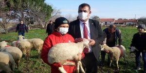 TÜDKİYEB, sosyal medyada ünlenen küçük çoban Şevki'yi ödüllendirdi