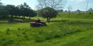 Gebze bölgesindeki yeşil alanlar yaza hazırlanıyor