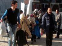 95 kaçak göçmen ve 11 insan taciri yakalandı