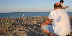 Antalya'da caretta carettalar için 'yaşam nöbeti' başladı
