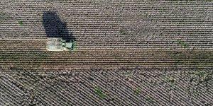 Tarım ve Orman Bakanlığı kuraklığı sahada yakından takip ediyor