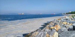 Marmara Denizi'nin müsilajdan kurtarılması için 'acil eylem planı'nın uygulanması önemli