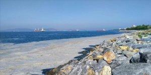 Bakan Kurum: Marmara Denizi'nden 7 günde 2 bin 684 metreküp müsilaj temizlendi