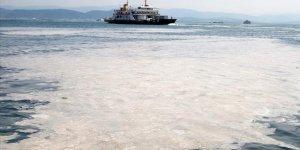 Marmara'yı ölü denize çevirenlere 'dur' diyelim