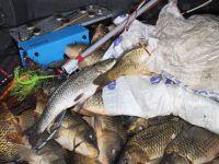 Elektroşok Cihazıyla Balık Avladı Cezayı Yedi