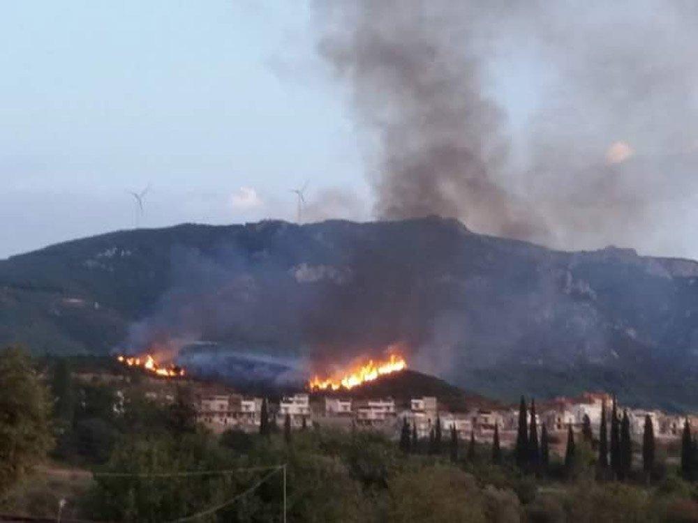 Aydın'da 3 Ayrı Yerde Orman Yangını