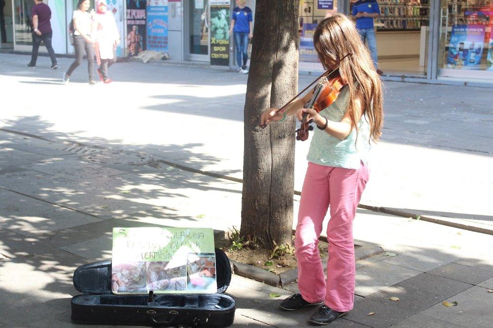 Sokaklarda Keman Çalarak Kedi Evi Yaptırdı