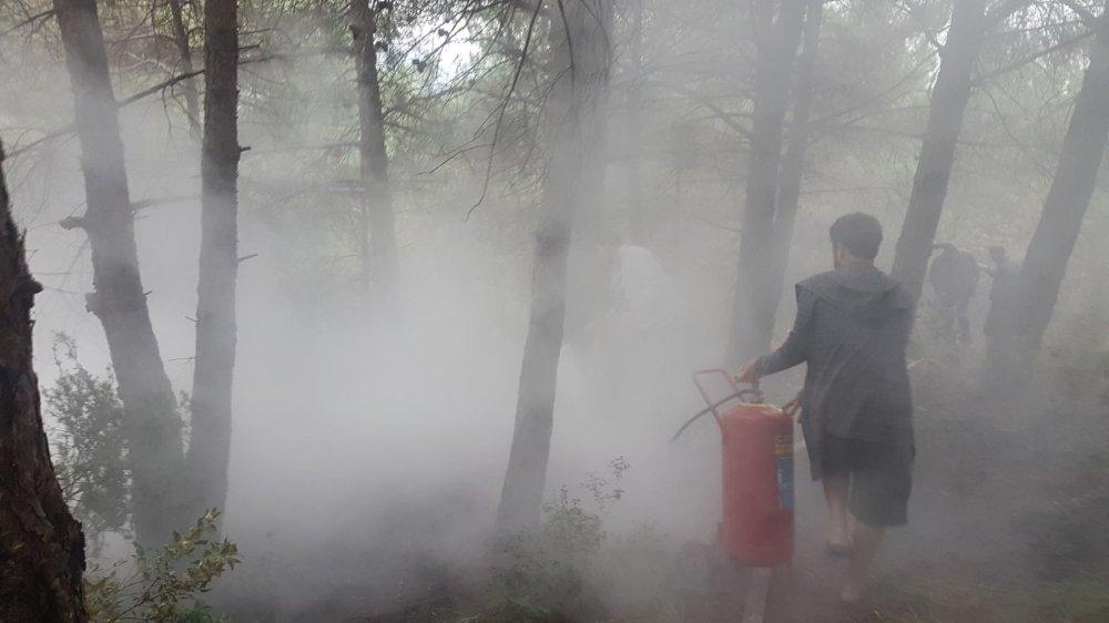 Amasra'da Orman Yangını