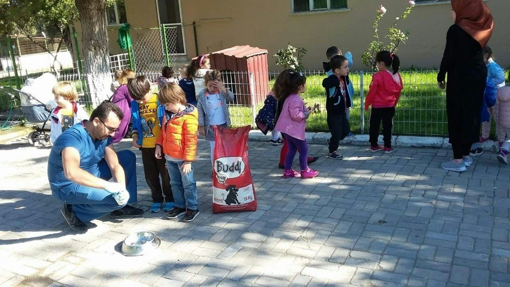 Burhaniye'de Öğrencilerin Hayvan Sevgisi Takdir Topladı