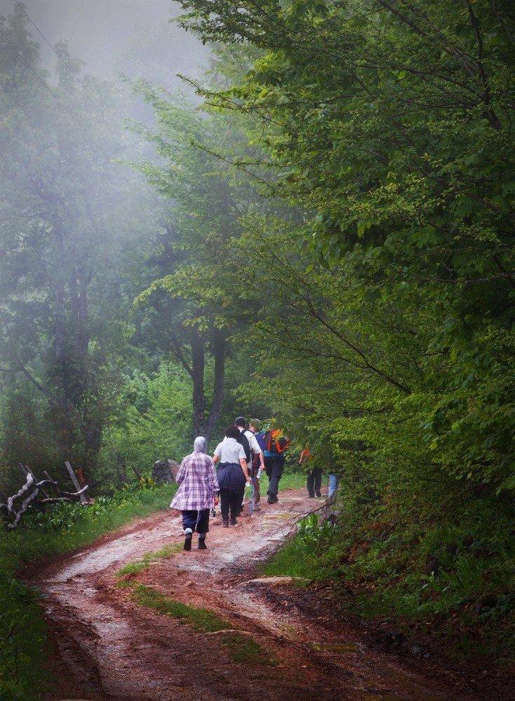 Akyazı'nın Yaylaları Doğa Yürüyüşleriyle Şenleniyor