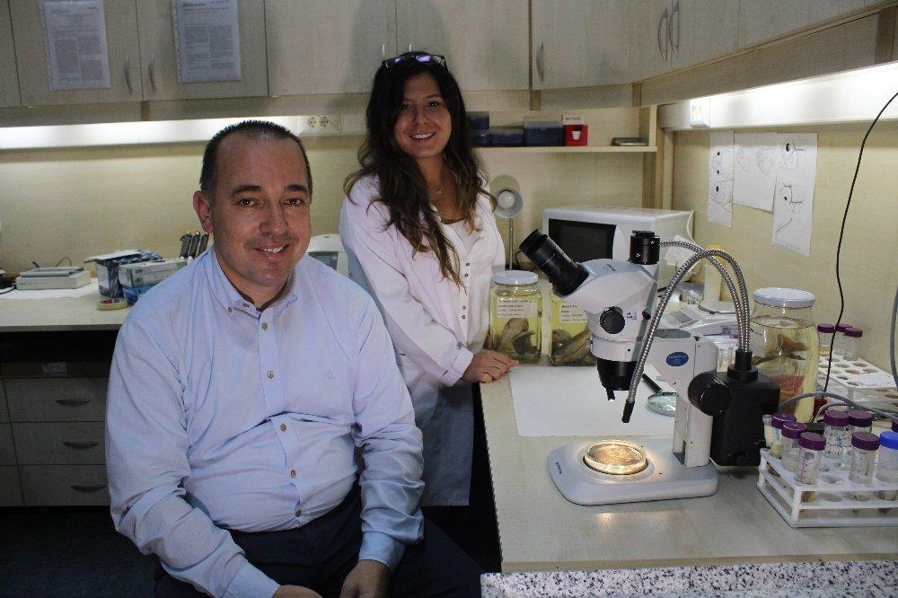 Türk Bilim İnsanları Keşfetti