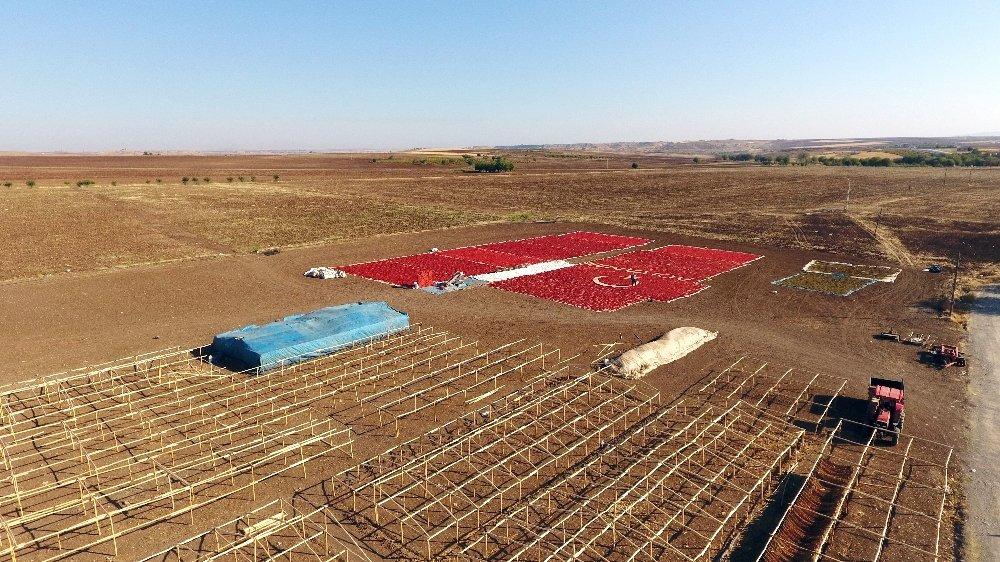 Kırmızı Biberle Türk Bayraklı Görsel Şölen