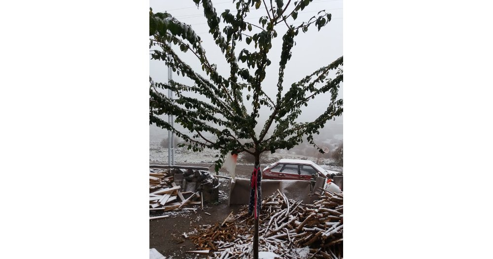 Ankara'ya Mevsimin İlk Karı Yağdı