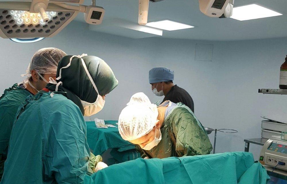 Organ Nakillerinin Yüzde 78'i Canlıdan
