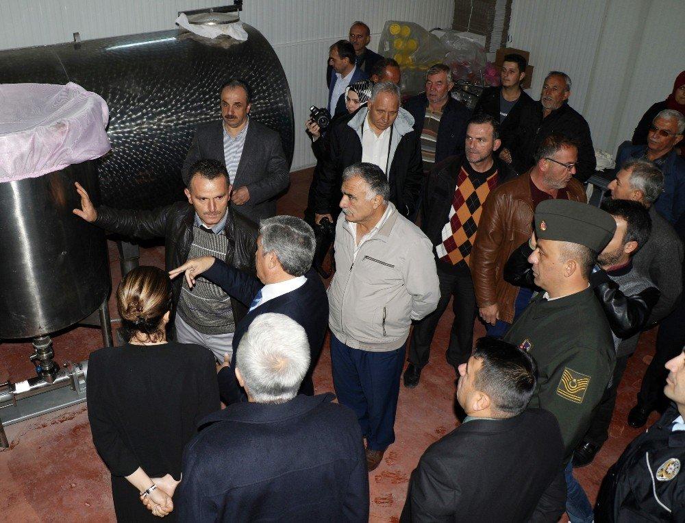Köyde Kurdukları Fabrikadan Dünya'ya Pancar Pekmezi İhraç Edecekler