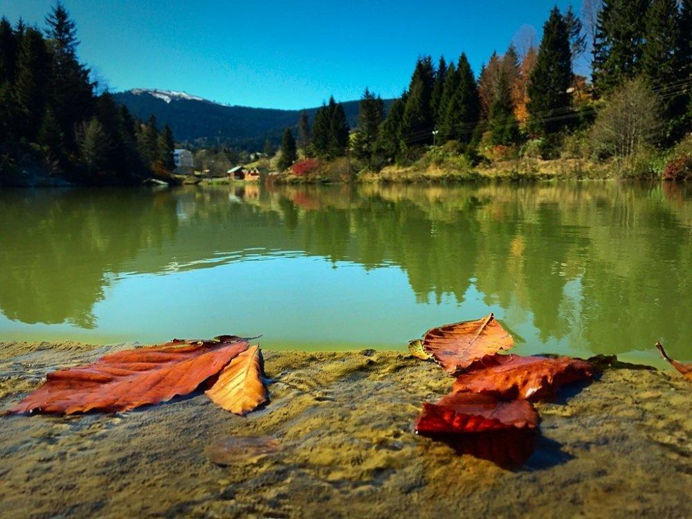 Trabzon'un Balıklıgöl'ünde Sonbahar