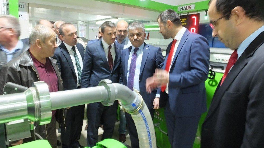 Burhaniye'de 150 Yıllık Zeytinyağı Fabrikası Devlet Desteği İle Yenilendi