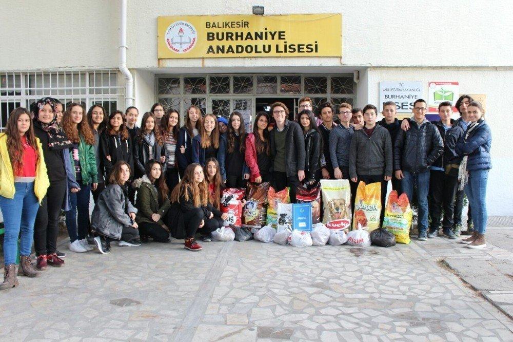Burhaniye'de Liseliler Sokak Hayvanları İçin Mama Topladı