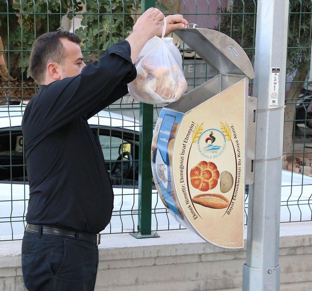 Bayat Ekmekler Çöpe Değil Sokak Hayvanlarına Gidiyor