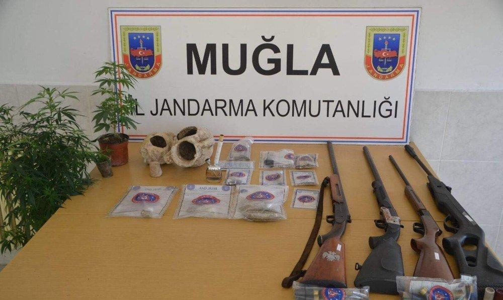 Muğla'da uyuşturucu serasına operasyon: 9 gözaltı