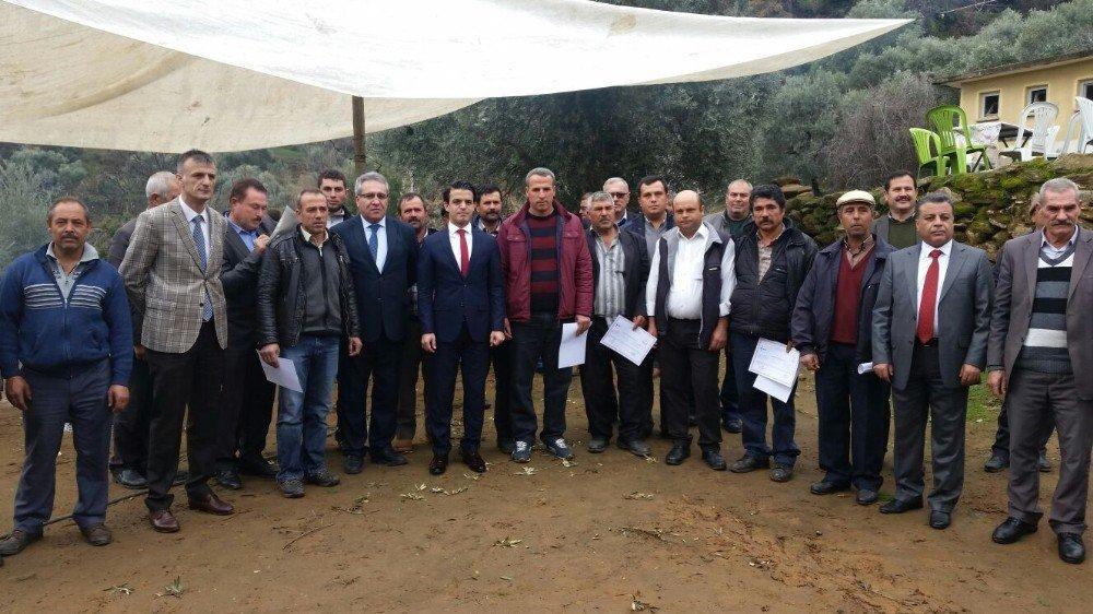 Bozdoğan'da zeytin budama kursu sertifika töreni yapıldı