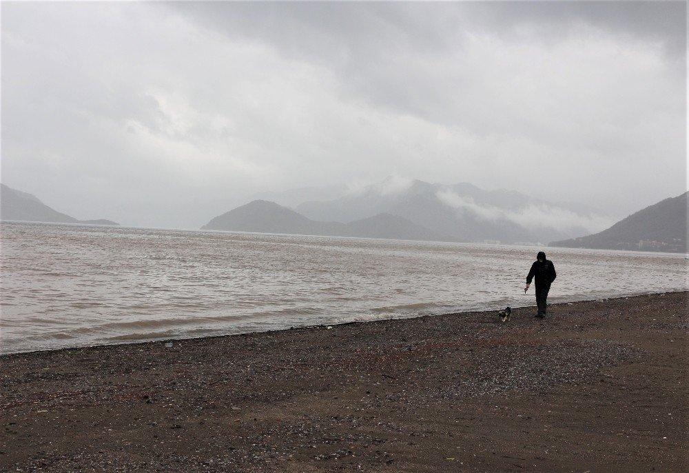 Sahile Gidenler Şaşkına Döndü