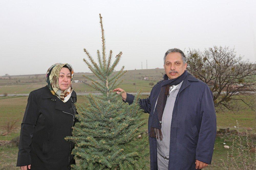 'Hayırlı Olsun' Hediyeleri Talas'ı Yeşillendiriyor
